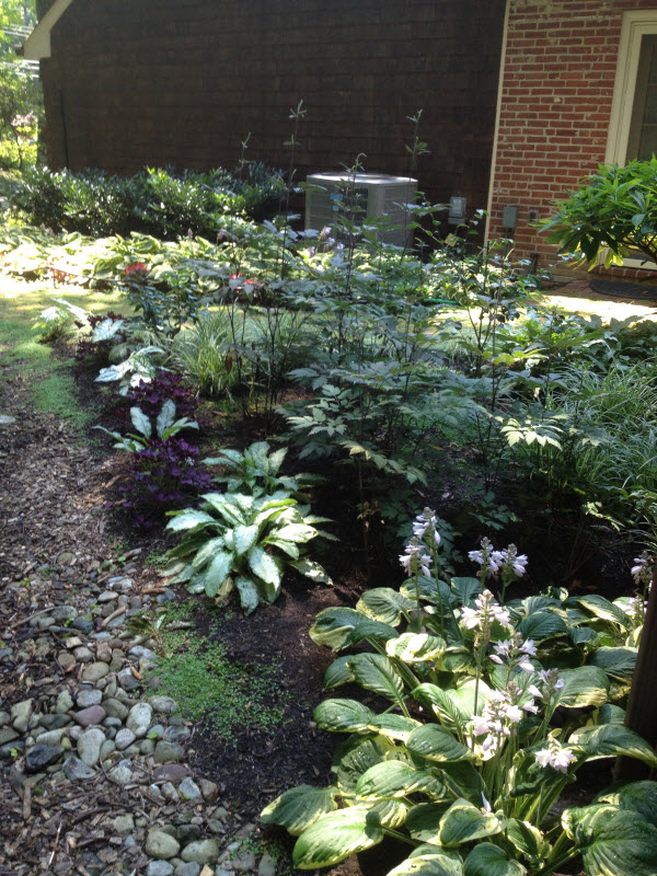 Planting | DeWane Landscape and Design