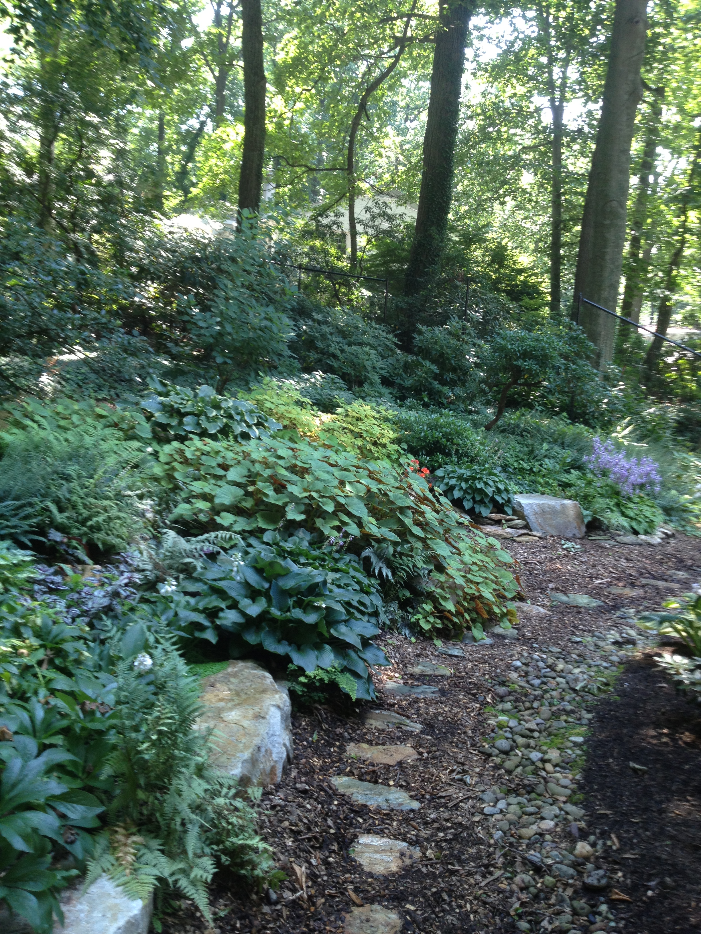 Foliage | DeWane Landscape and Design